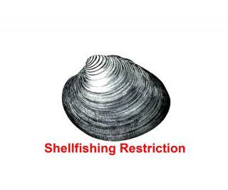 shellfishrestict