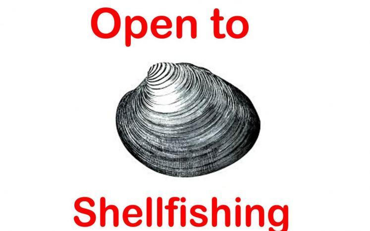 openshellicon